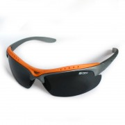 Sunglasses 6137